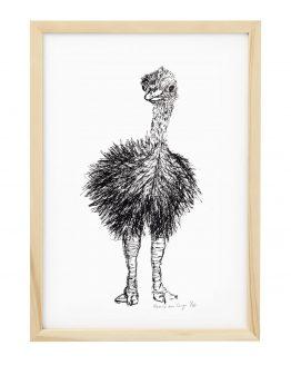 Zeefdruk struisvogel
